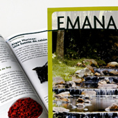 Graphic Project: Emana Magazine - thumbnail