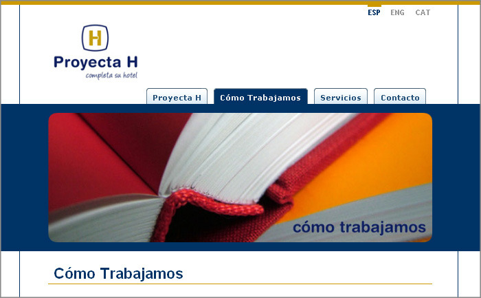 Proyecta H Web section detail